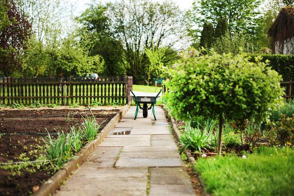 Pięknie zagospodarowany ogród
